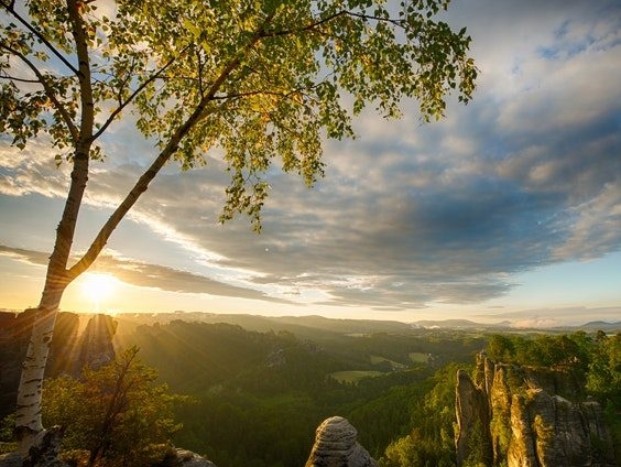 mountain-view-814490